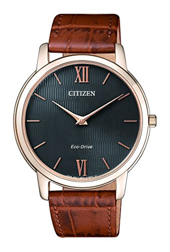 Citizen AR1133 15H
