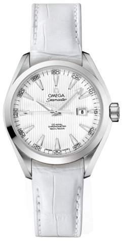 Omega Seamaster Aqua Terra Automatic 23113342004001