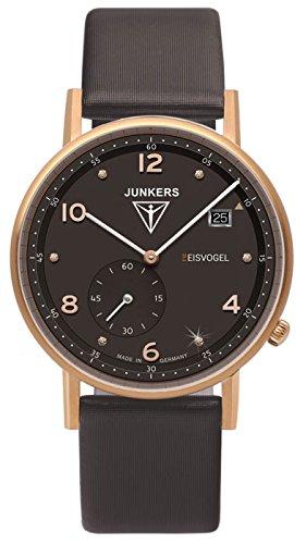 Junkers Eisvogel F13 6733 2