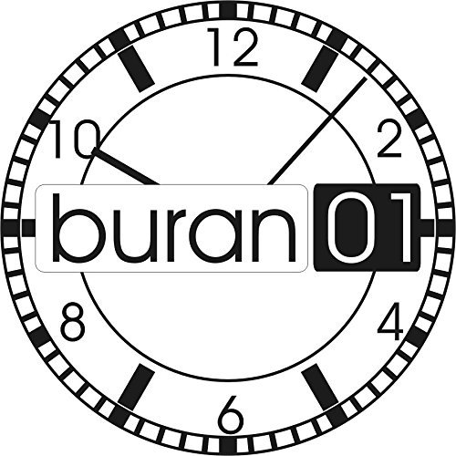 Buran01 com 1 Paar Edelstahl Federstege 1 78 mm Durchmesser Federstifte Stege Uhren Stifte 20 mm