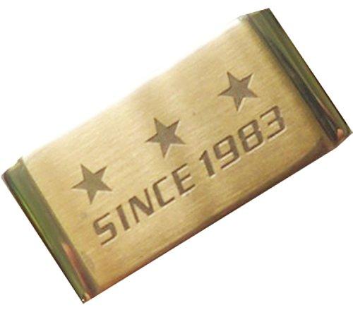 Gold Edelstahl Uhrenarmband Keeper Halterstange Hoop Loop Ring Halterung Halter fuer Casio Armbanduhr Digitaluhr ga 110 ga 100 ga 150